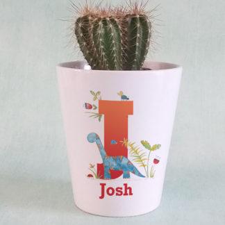 Personalised Dinosaur Plant Pot