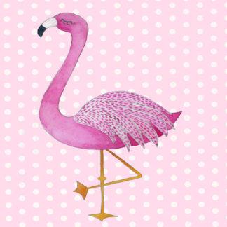 Flamingo & Swan