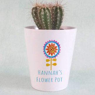 flower plant pot