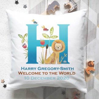 Baby Name cushion