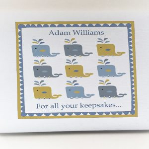 Boys Christening Book