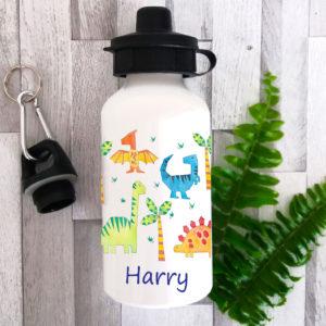 dinosaur lunch bag bottle