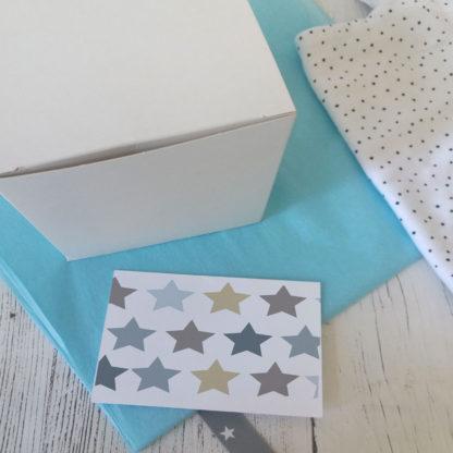 baby star money box